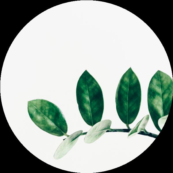 spazioincanto-blog-img-header